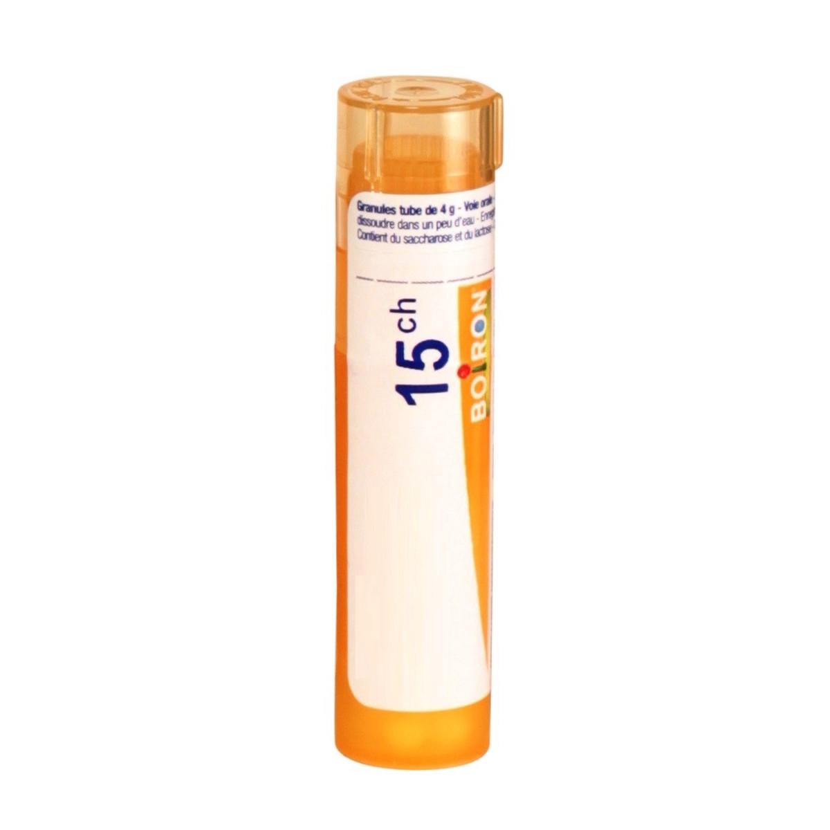 ADONIS VERNALIS 15CH - Tube