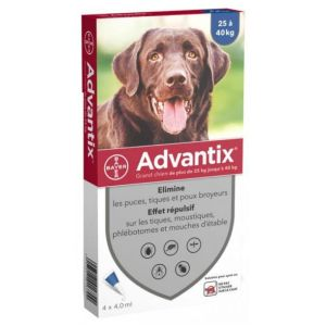 Advantix Grand Chien Spot-On - 4 pipettes
